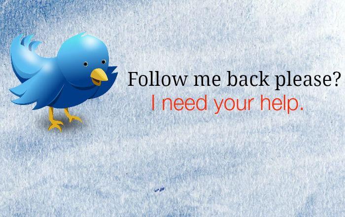follow me back twitter