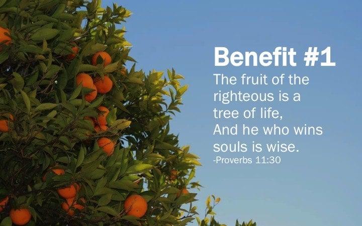 Proverbs 11:30